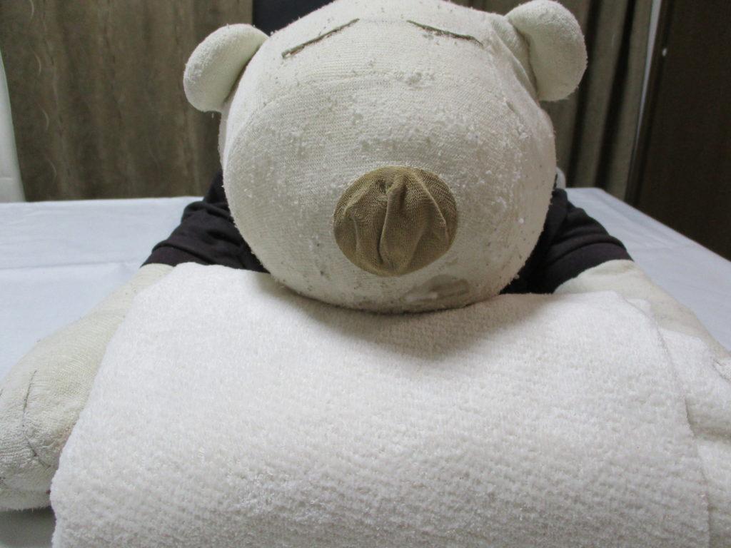 ぬいぐるみのお医者さん、ぬいぐるみ修理、ぬいぐるみ病院、ぬいぐるみクリーニング、ぬいぐるみお直し、ぬいぐるみお風呂、ぬいぐるみ、ぬい撮り、お顔縫い直し